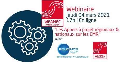 Webinaire AAP PMBA WEAMEC 2021 1 copie