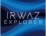 irwaz pDZfYb73 copie